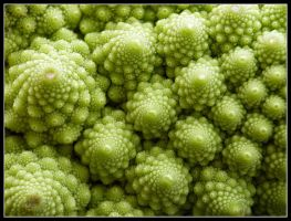Fractal or Broccoli? by kanes