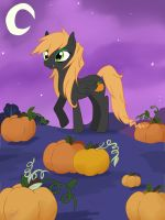MLP OC - Pumpkin Night by Mearii-chi