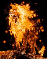 Simba's on fire by Neolithic-angel