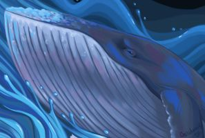 The 52 Hertz Whale by Gelidwolf