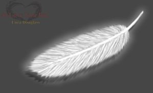 Feather by LunaARTemis-S237