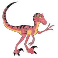 Raptor by stegosaur3