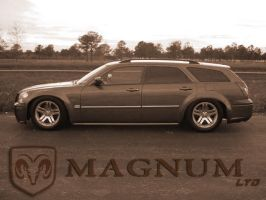 Magnum LTD. by deadlydesigns