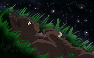 Counting Stars by Dawnheart101