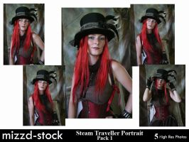Steam Traveller Portrait Pack1 by mizzd-stock