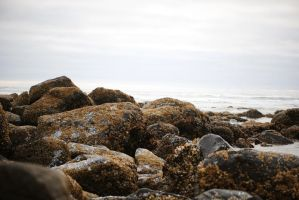 rocky shore by ContagiousPixie