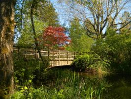 The bridge by the singing trees~ by Mathayis