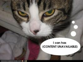 Lolcats against sopa by duraga131