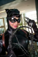 Catwoman6 by SedusaLaGorgon