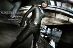 DC: Nightwing by qcamera