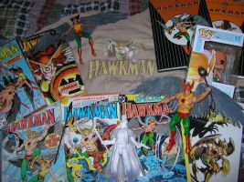 My Hawkman and Hawkgirl Collection by WibbitGuy