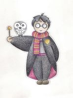 Harry Potter by Spiralpathdesigns