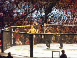 James Te-Huna at UFC 110 by Shame-On-The-Night