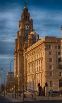 Royal Liver Building Clock by SteRawlinson