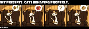 SHT: Cats Behaving Properly. No Want 4 ChzBrgr by jornas