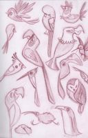 Boids by Karurie