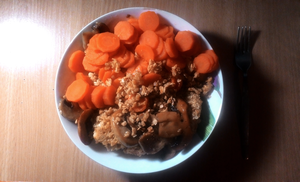 Chicken in oatmeal with mushrooms, carrot by Yami19