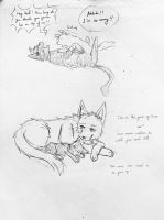 SnK Dogs and Cats(Eren,Levi) Page10 by Siveryyao