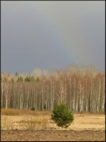 March rainbow... by Yancis