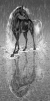 She Walks with Rain by Starhorse