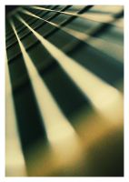 .: GUITAR :. by md981