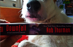 CURRENTLY READING: Downfall by MerlinLemon