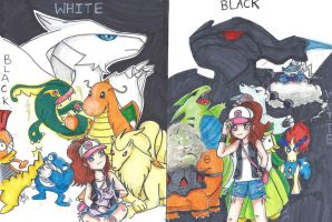 Pokemon Black and White by 6wendybird91