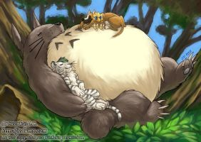 Sleeping with Totoro by J-C