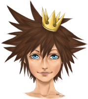 King Sora by TopHat-And-Tentacles