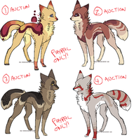 design auctions - update by catfarts