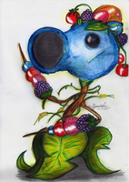 Berry Shooter by Fouad-z
