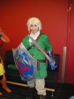 Link Brawl - Otakuthon 2008 by Ryukai-MJ