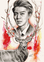Sehun and deer. by FreedomforGoku