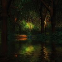 Lights in the Forest by oldhippieart