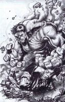 Incredible Hulk by emilcabaltierra