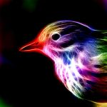 Fractal Bird by minimoo64