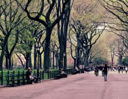 Central Park by EmersonStem