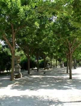 Stone benches beneath trees of Champ de Mars by EUtouring