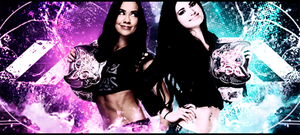 Divas Champions - AJ Lee and Paige by Bercikovsky