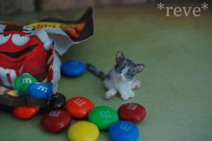 Handmade Miniature Kitten * GIF * by ReveMiniatures