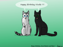 Happy Birthday Kindle :D !! by SilverMoonNightMist