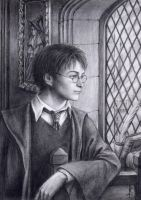 Harry Potter by edarlein