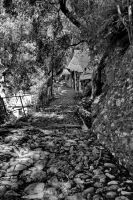 stony path by crh