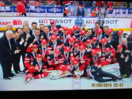 Team canada win gold 2015 pic 2 by catsvsfox