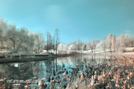 dream waterscape by a-b-n
