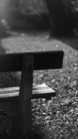 Bench in the park by Chiplar