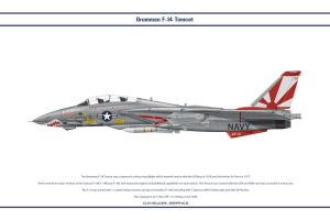 F-14A VF-111 1 by WS-Clave