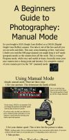 Photo 101: Manual mode basics by honolo