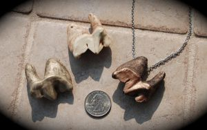 African Lion Tooth Pendants (Replica) by kittykat01