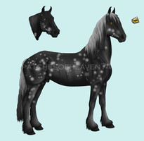 Audax-stud 3 SOLD by patchesofheaven74